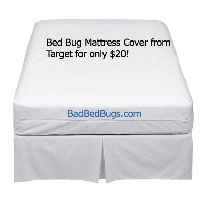 Exceptionnel Bed Bug Mattress Cover